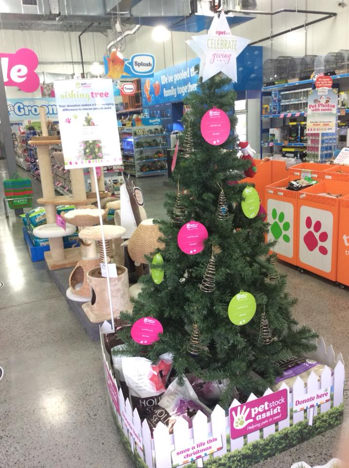 Petstock wishing tree