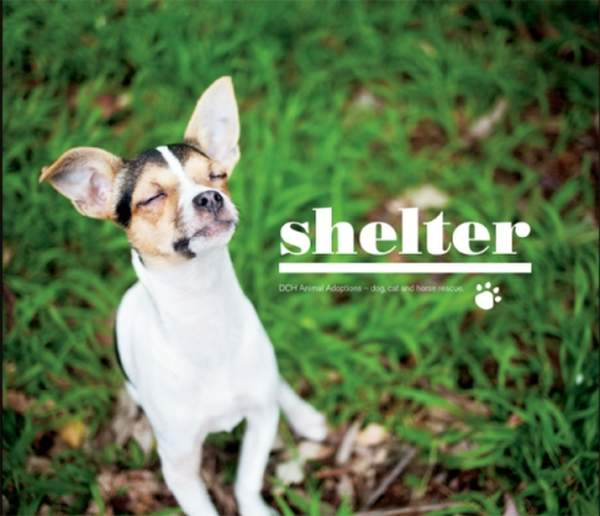 """Shelter"" - Coffee Table Book"