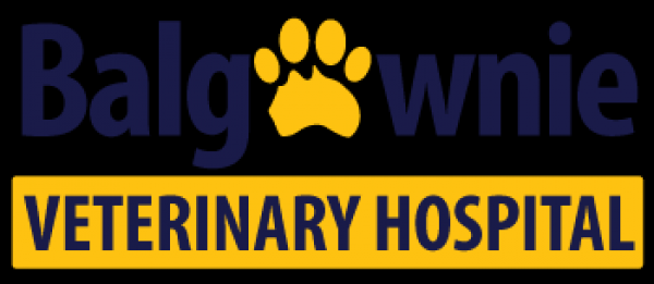 http://www.auspaws.com.au/our-vet-practices/nsw/balgownie-veterinary-hospital/