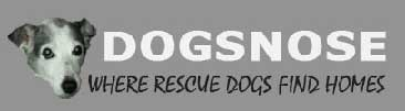 dogsnose.org
